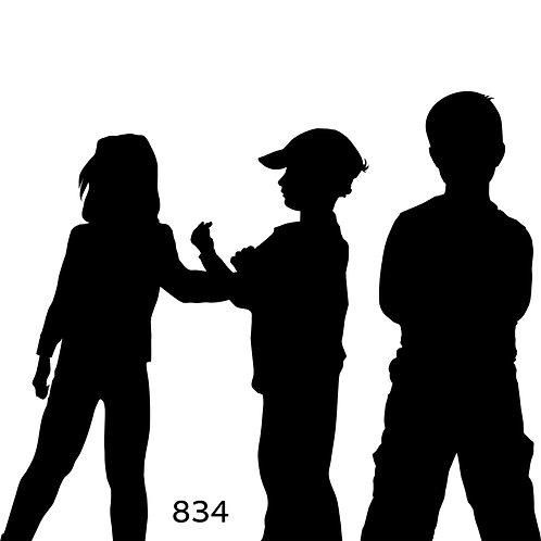 834 שבלונה נערים