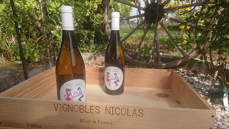 Vignobles Nicolas T'es d'où ?