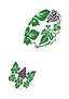 Run Into The Wine, le Trail vigneron - Château Haute Brande