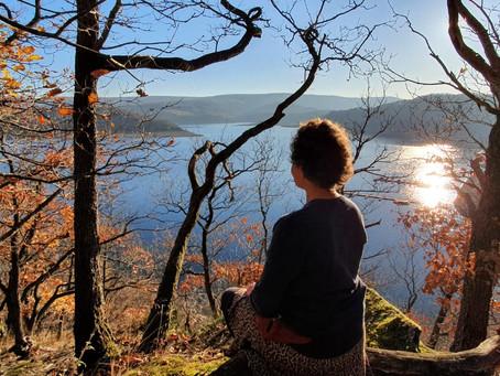 Mit Freude eine organische und individuelle Meditationspraxis entwickeln