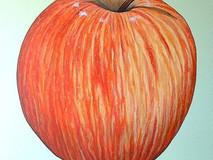 Gala Apple I