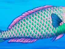 Parrotfish I