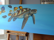 Turtle - Cleaning station