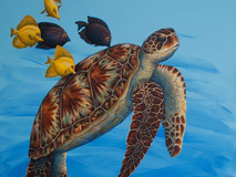 Turtle - Cleaning Station II