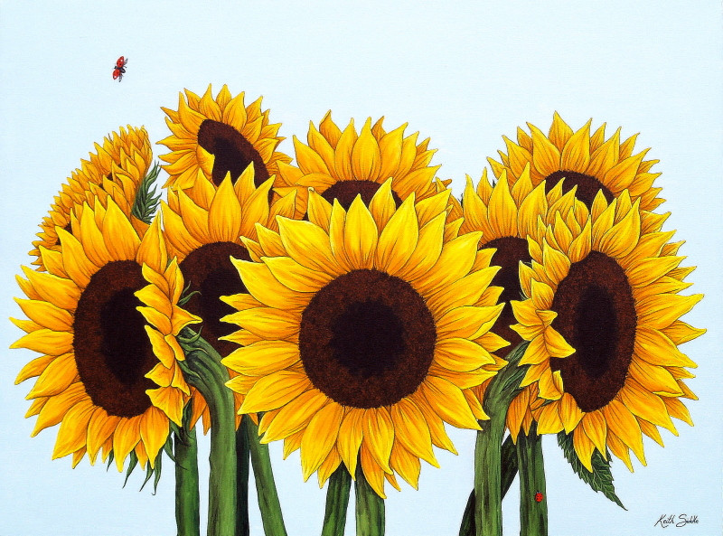 Sunflowers & Ladybirds
