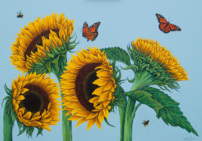 Sunflowers, Monarch Butterflies and a Bee