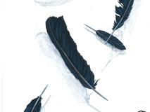 Icarus - Black