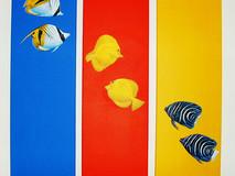 Primary Triptych