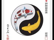 Yin Yang 01