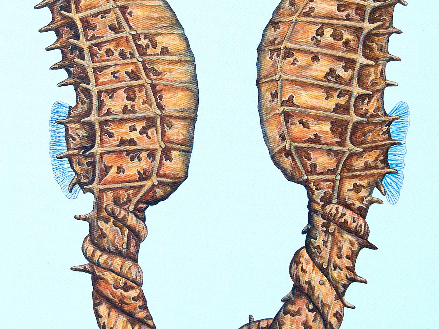 Together - Seahorses