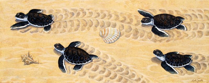 Advancing - Turtle Hatchlings