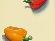 Peppers - Yellow, Red. Orange & Green