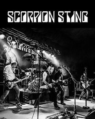Scorpion Sting Gärtringen