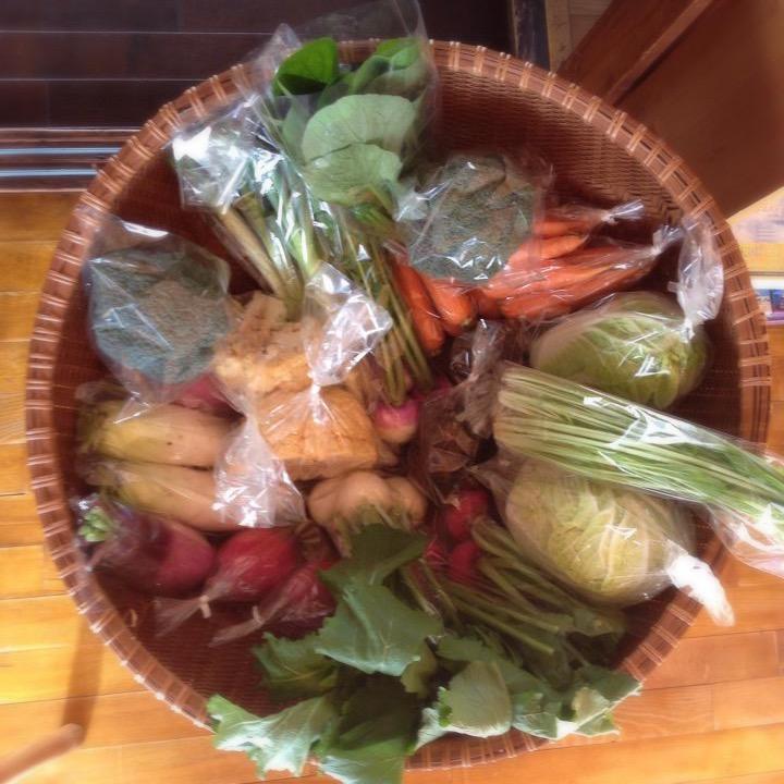 毎週金曜日は無農薬野菜が入荷!