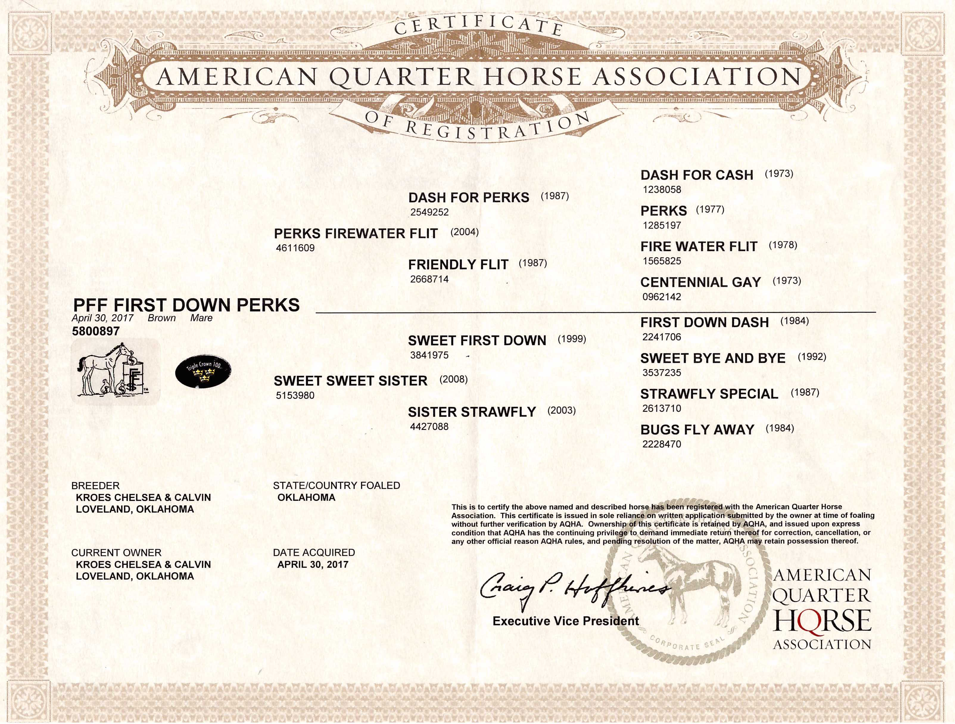 PFF First Down Perks AQHA Papers.jpg