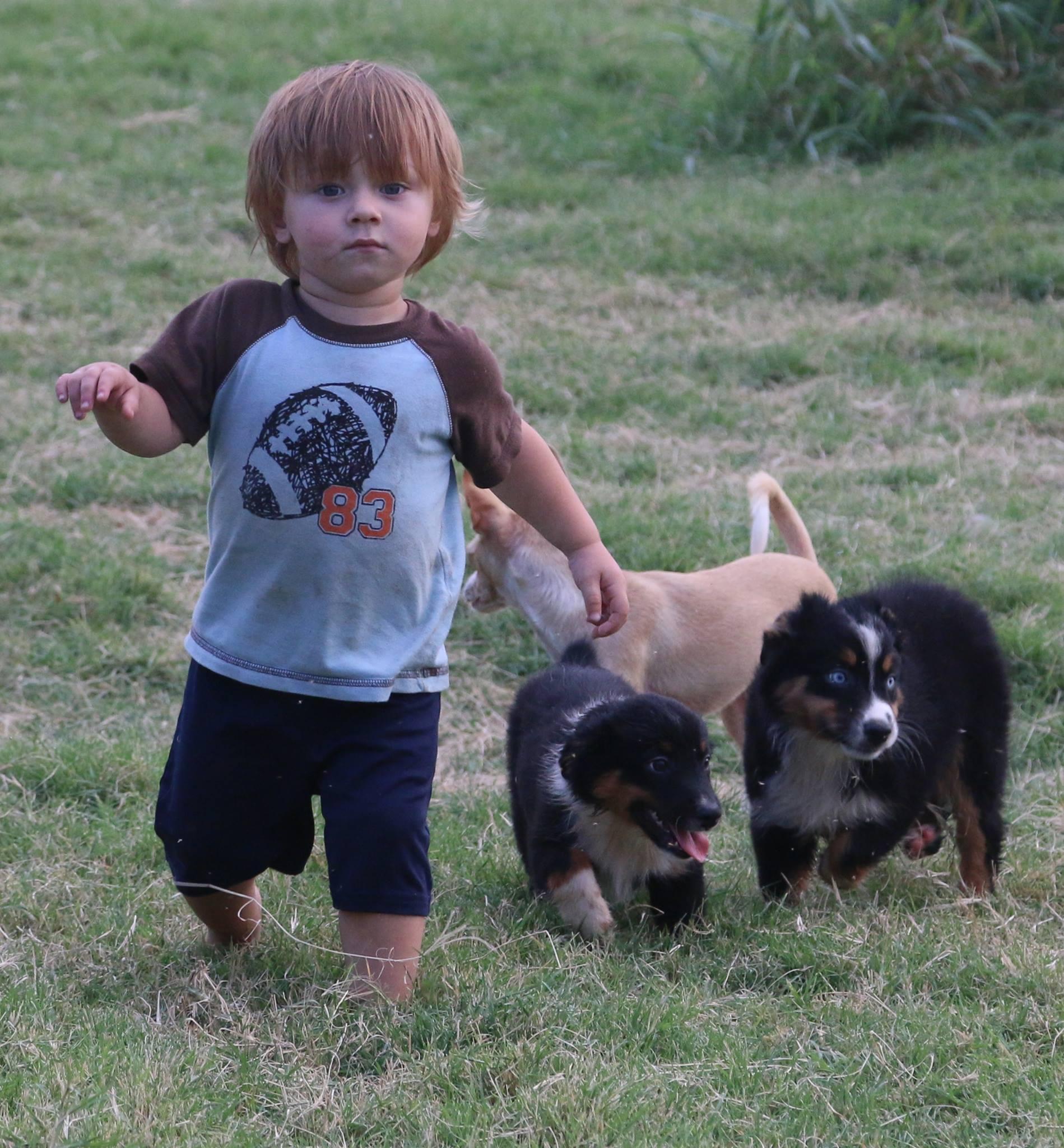 carson w dogs.jpg
