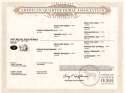 PFF Reckless Perks AQHA Papers.jpg