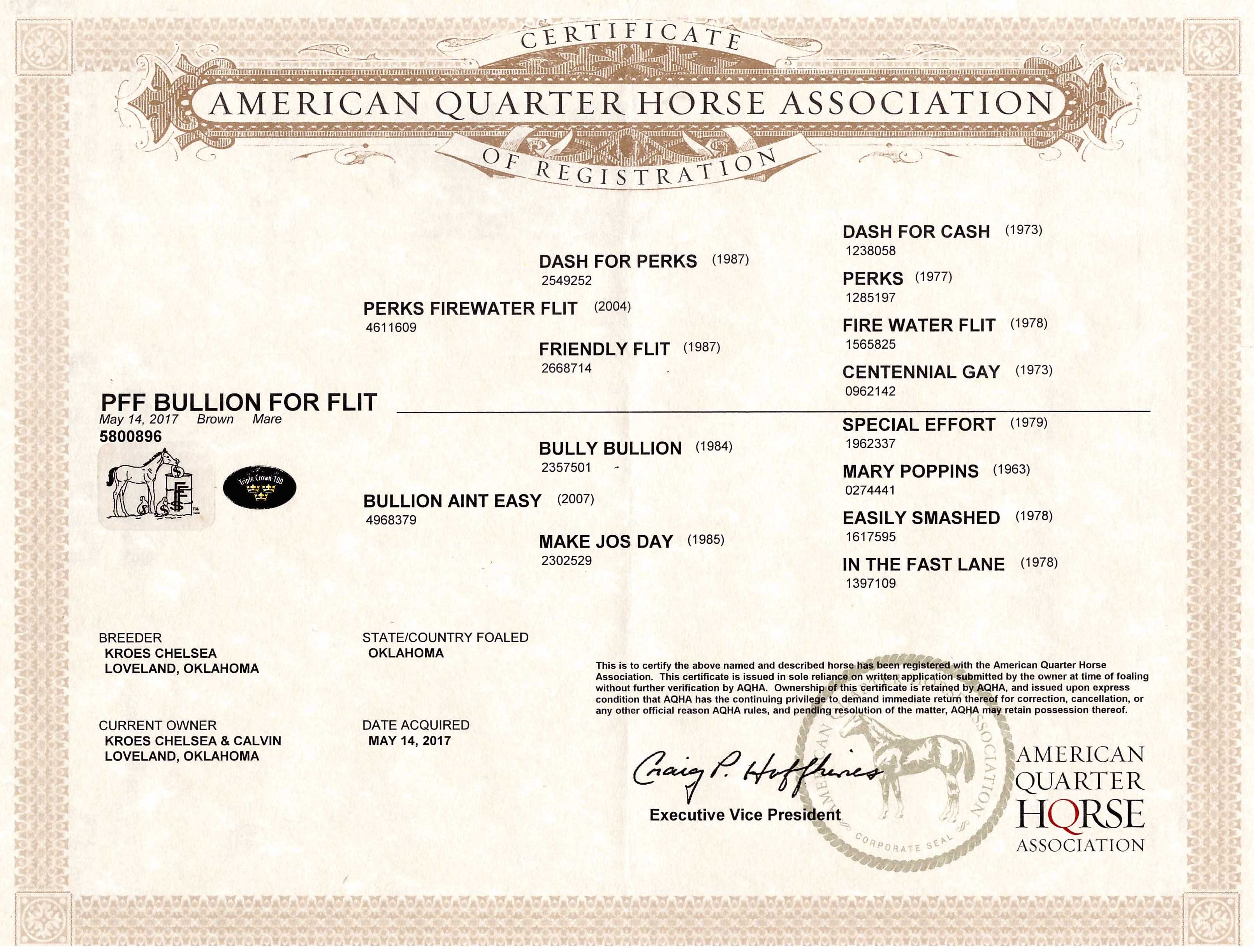 PFF Bullion For Flit AQHA Papers.jpg