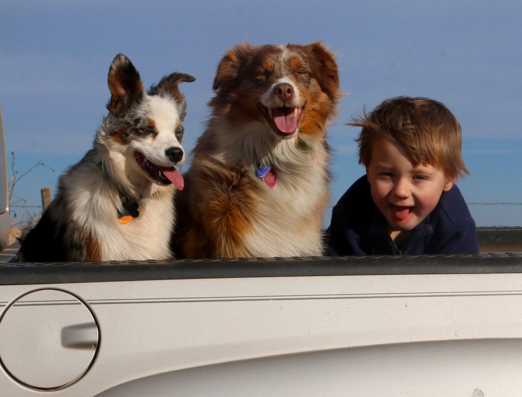 Carson n Dogs n truck.jpg