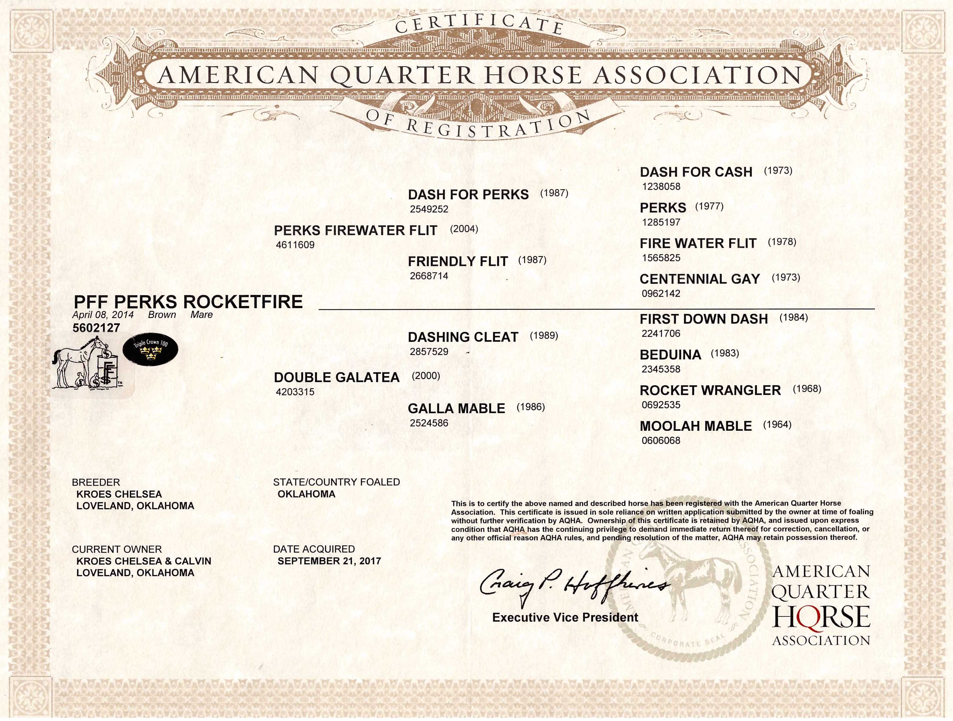 PFF Perks RocketFire AQHA Papers.jpg