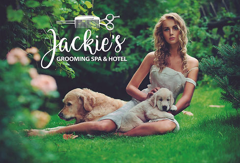 In Jackies Grooming Spa & Hotel we treat your pets like family, we specialize in dog grooming in the Boynton Beach, Forida area.  Some of the services include dog bathing, ear cleaning, nail clipping, and teeth brushing. If your traveling we also offer dog boarding,doggy day care, and dog training.