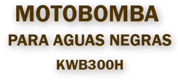 MOTOBOMBA 300H (4).png