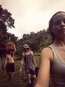 Ayer fuimos a la finca 7 rios a sembrar 150 arbolitos de cacao  😊