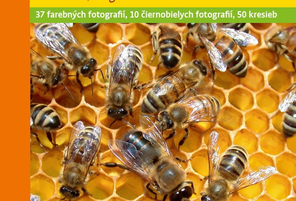 Kniha Zdravé včely
