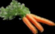 Livup-Carrots.png
