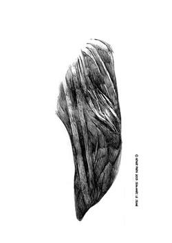 2007_réflexion_minérale