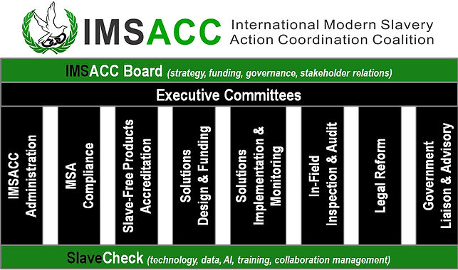 IMSACC Org Chart.jpg