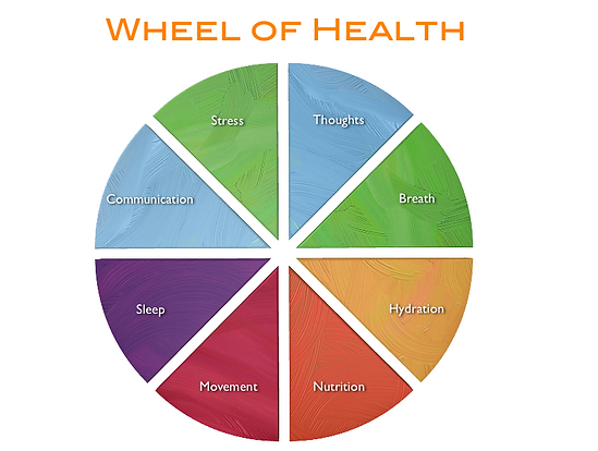 wheel-of-health.png