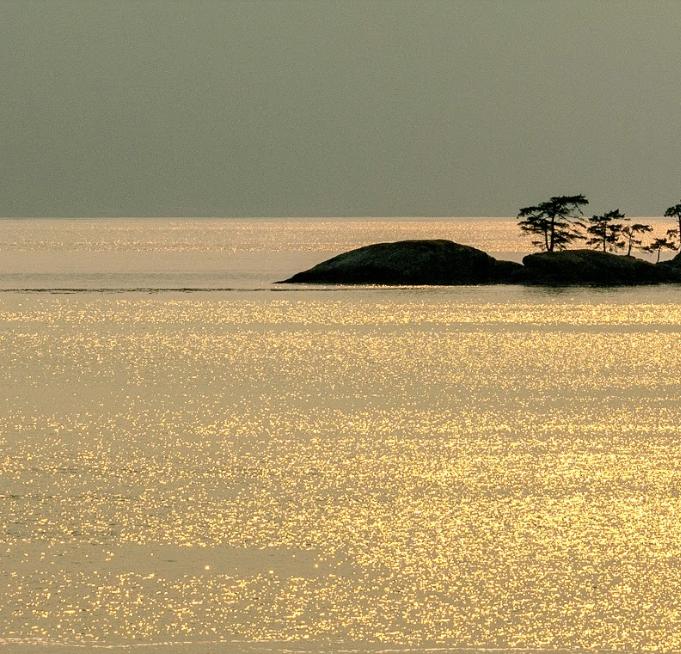 Golden Sea, Vancouver Island, Canada, 20