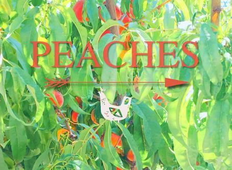 Peaches: Yum!
