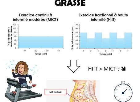 Pratiquer un exercice continu ou intermittent pour perdre efficacement de la masse grasse ?