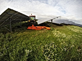 Solar Field Mowers