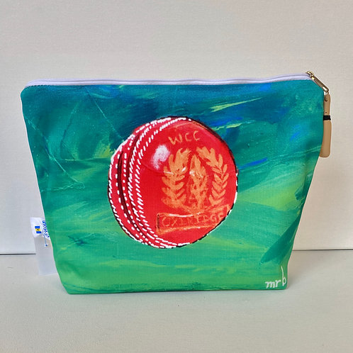 WASHBAG CRICKET BALL
