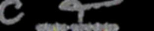ct logo_edited.png