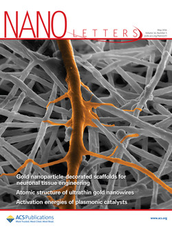 Gold Nanoparticle-Decorated Scaffolds Promote Neuronal Differentiation and Maturation