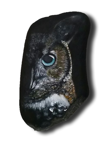 owl tr.png