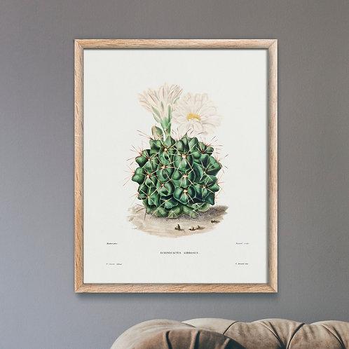 Framed Giclèe Art Print Mockup - Minimalist Plant Lithograph