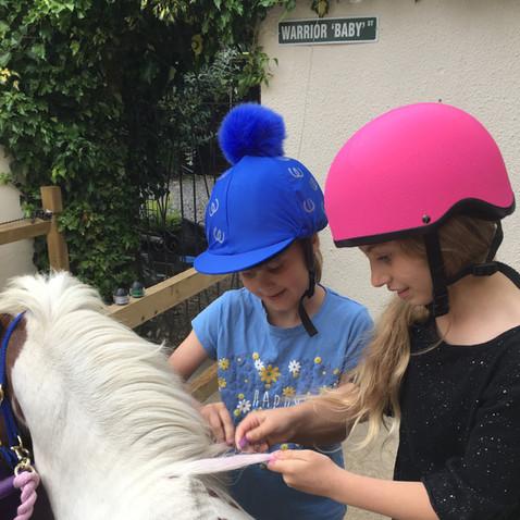 Bling My Little Horse