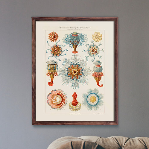 Framed Giclèe Art Print Mockup - Aquatic Jellyfish Illustration Lithograph