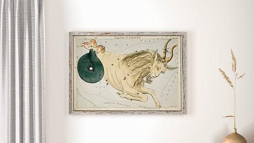 Capricorn (Astrological Star Sign)
