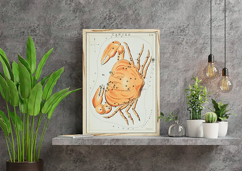 Sidney Hall - CANCER - Astrology Constellation of a Crab