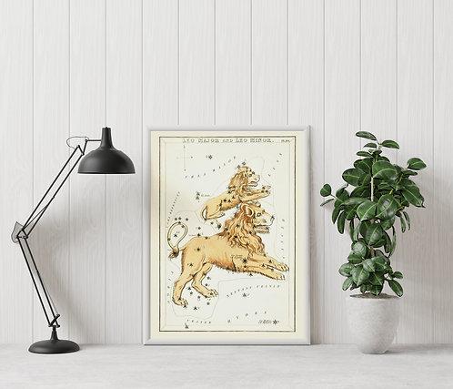 Leo (Astrological Star Sign)