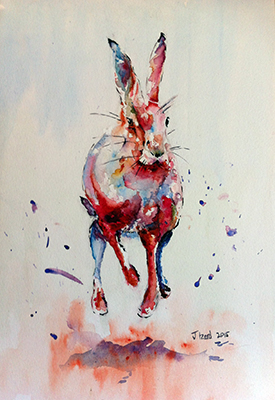Galloping Hare (Jake Winkle)