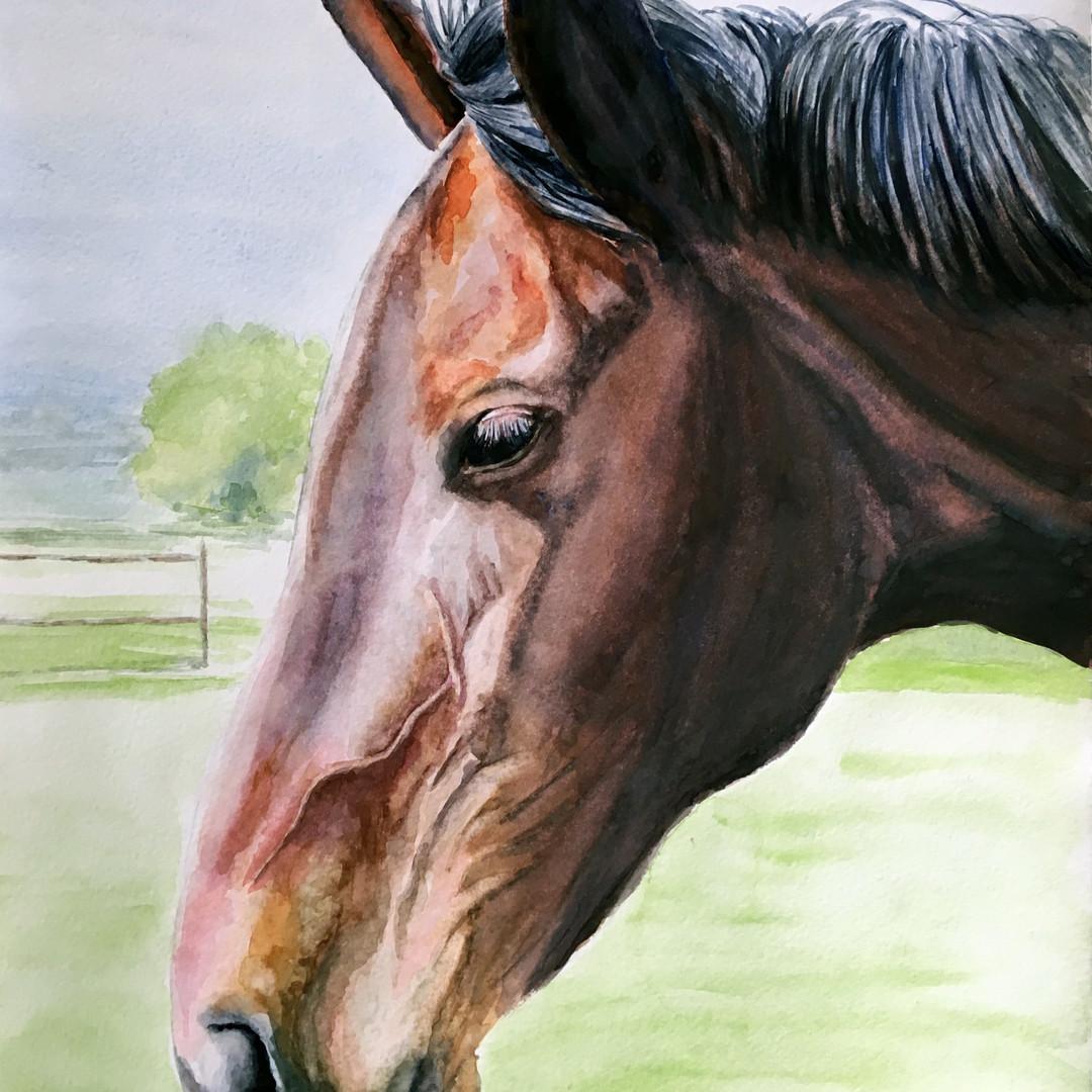 Sharne watercolour portrait