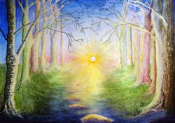 Glimmer of Sunshine