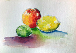 Study of Fruit